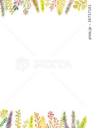 植物 水彩イラスト フレーム 36737101