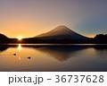 精進湖にカモと日の出と光芒当たる富士山 36737628