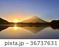 精進湖にカモと日の出と光芒当たる富士山 36737631