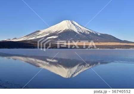 氷結の山中湖と富士山 36740552