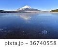 冬 富士山 山中湖の写真 36740558
