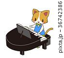 音楽 動物 演奏のイラスト 36742386