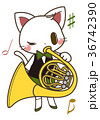 猫とホルン 36742390