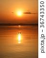 夕日 太陽 日没の写真 36743350