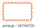もみじのフレーム 36746759