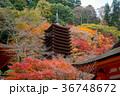 談山神社 十三重塔 紅葉の写真 36748672