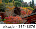 談山神社 十三重塔 紅葉の写真 36748676