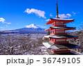 富士山 忠霊塔 浅間神社の写真 36749105
