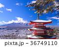 富士山 忠霊塔 浅間神社の写真 36749110