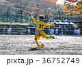 少年サッカー 36752749