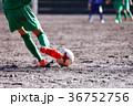 少年サッカー サッカー 試合の写真 36752756