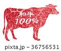 和牛100% 牛肉 牛のイラスト 36756531