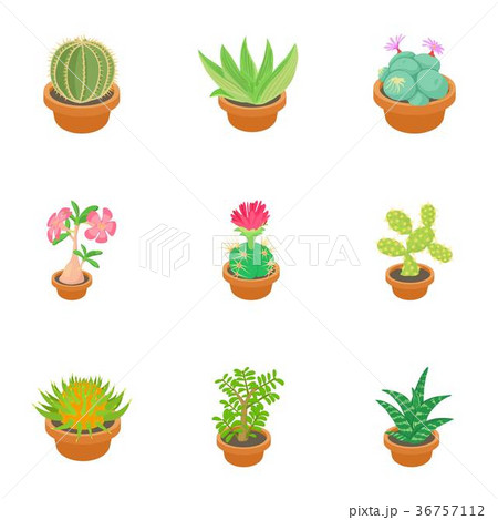 Green cactus icons set, cartoon style 36757112