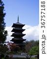 紅葉の備中国分寺五重塔(縦位置) 36757188