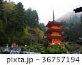 氷雨の中の美作長福寺三重塔 36757194