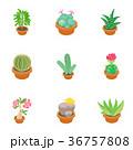 植物 アイコン ベクターのイラスト 36757808