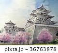 伊賀上野城 手書きスケッチ 忍者の里 桜 36763878