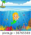 漫画 サンゴ 珊瑚のイラスト 36765569