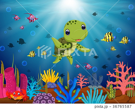 cartoon turtle underwaterのイラスト素材 36765587 pixta