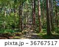 平泉寺白山神社 白山神社 神社の写真 36767517