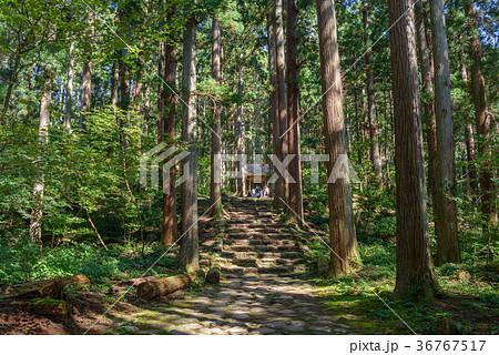 平泉寺白山神社 境内風景 36767517