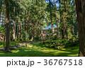 平泉寺白山神社 白山神社 神社の写真 36767518