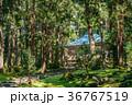 平泉寺白山神社 白山神社 神社の写真 36767519