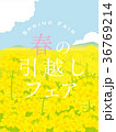 菜の花畑 春の引越しポスター 36769214