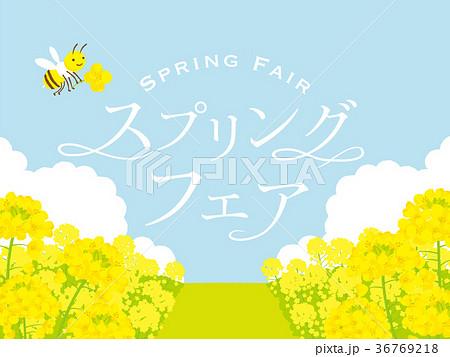 菜の花畑 背景イラストのイラスト素材 36769218 Pixta