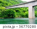 橋脚 橋 新緑の写真 36770280
