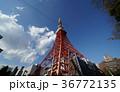 青空 東京タワー 雲の写真 36772135
