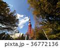 青空 東京タワー 雲の写真 36772136
