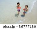 夏の海辺をスイカを持って歩く姉妹 36777139
