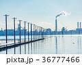 江川海岸 海 青空の写真 36777466