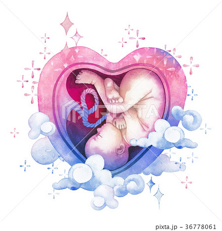 Watercolor embryo inside the heart shaped womb 36778061