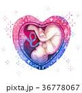 ベビー 赤ちゃん 水彩画のイラスト 36778067