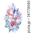ベビー 赤ちゃん 透明水彩のイラスト 36778080