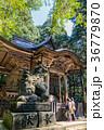 平泉寺白山神社 神社 参拝の写真 36779870