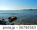 逗子マリーナ 海 自然の写真 36780363