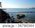 逗子マリーナ 海 自然の写真 36780364
