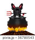 たき火 焚き火 焚火の写真 36780543