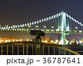夜景 東京 レインボーブリッジの写真 36787641