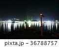 夜 夜景 港の写真 36788757
