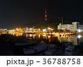 夜 夜景 港の写真 36788758