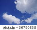 空 青空 快晴の写真 36790838
