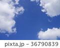 空 青空 快晴の写真 36790839