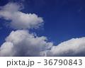 空 青空 快晴の写真 36790843