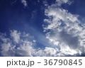 空 青空 快晴の写真 36790845