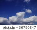 空 青空 快晴の写真 36790847