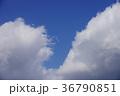 空 青空 快晴の写真 36790851